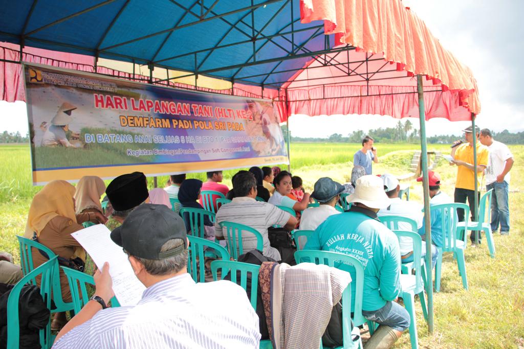 Dem-Farm Soft Component Anai BTO 1 P3A Sahabat Tani