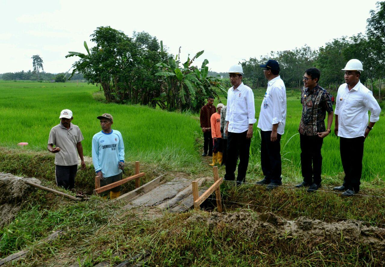 Agenda Pertama RI 1 di Sumatera Barat Tinjau Padat Karya di Dharmasraya