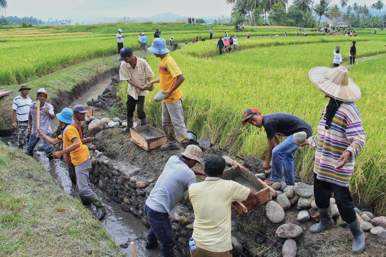 Pemanfaatan P3-TGAI bagi Petani di Kabupaten Dharmasraya