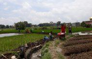 Sekilas Kegiatan P3-TGAI BWS Sumatera V Padang