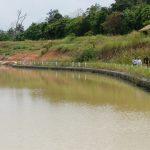 Kunjungan Direktorat Bendungan dan Danau di BWS Sumatera VI 8